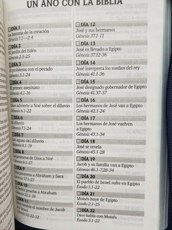 Biblia Tamaño Manual Reina Valera 1960 con Índice y Cierre Trío Tone a