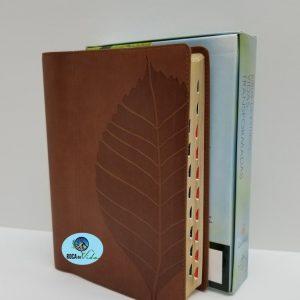 Biblia de Estudio Reina Valera 1960 Vidas Transformadas Color Cafe con Índice