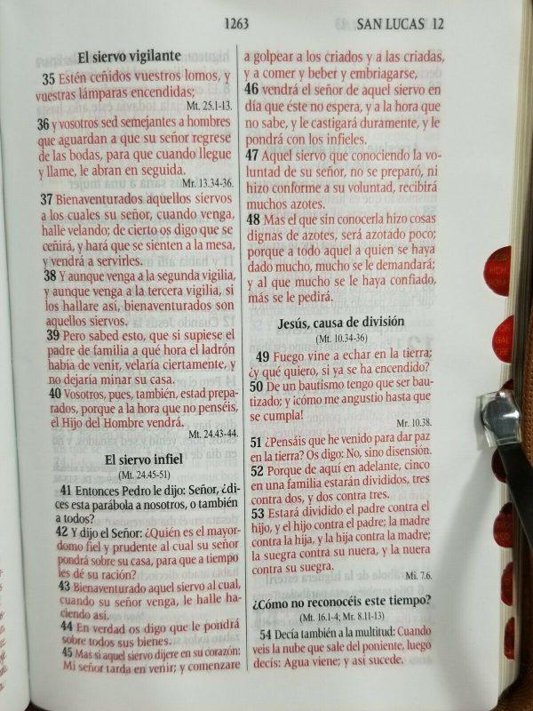 Biblia RVR 1960 Tamaño Compacto Color Cafe Claro para Jóvenes con Índice y Cierre b