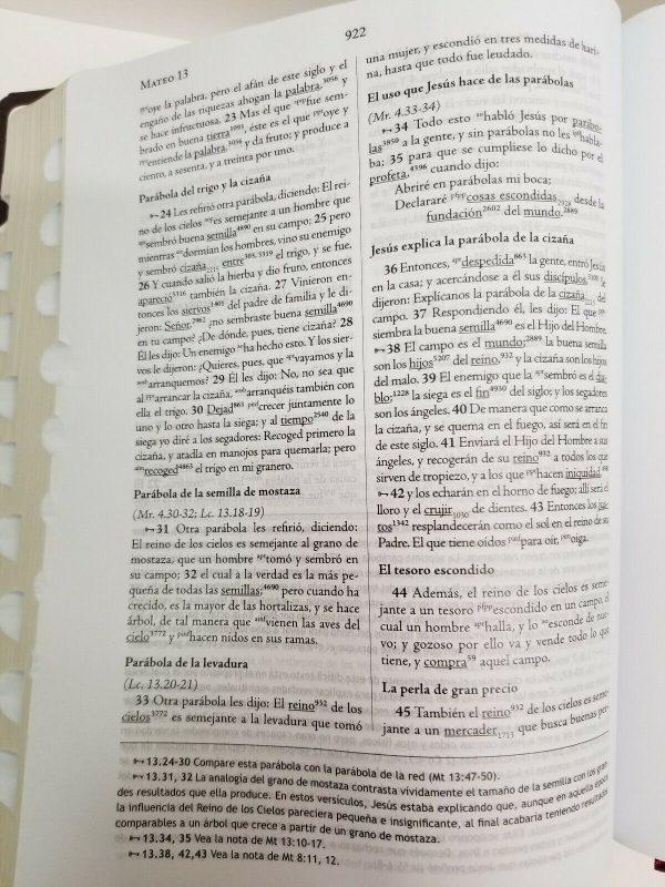 Biblia de Estudio Palabras Clave.