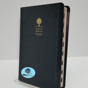 Biblia con Imágenes de Tierra Santa RVR 1960 Tamaño Manual Negro con Índice