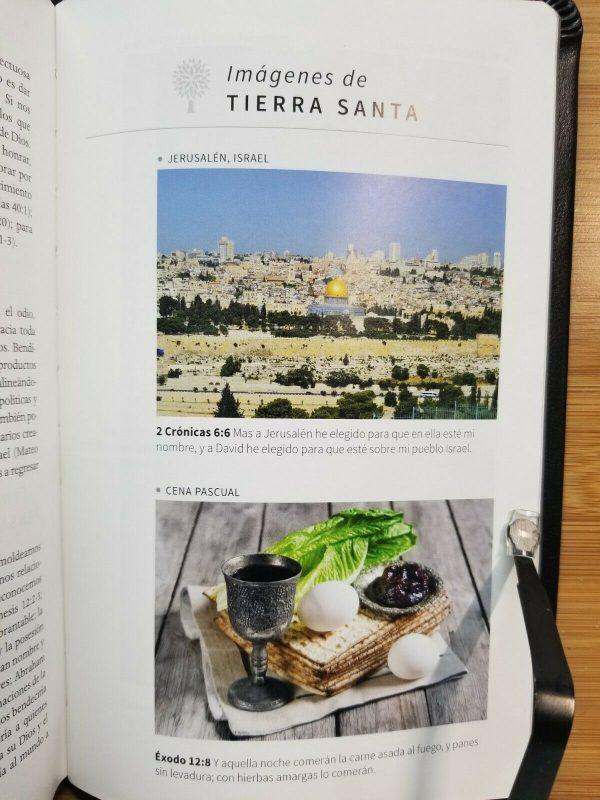 Biblia con Imágenes de Tierra Santa RVR 1960 Tamaño Manual Negro con Índice a