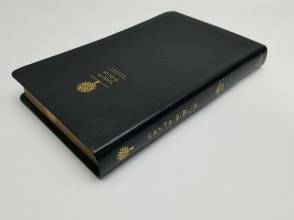 Biblia con Imágenes de Tierra Santa RVR 1960 Tamaño Manual Negro con Índice b