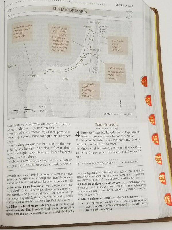 Biblia de Estudio para la Mujer RVR 1960 Piel Italiana Café Floral con Índice b